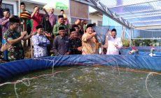 Permalink to Ponpes Makrifatul Ilmi Panen Perdana Ikan Lele Sitem Bioflog